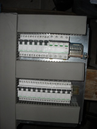 sdc11896